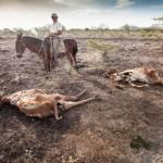 Nicaragua_Hawkey_CEPAD_drought_20140821_0116-624x416