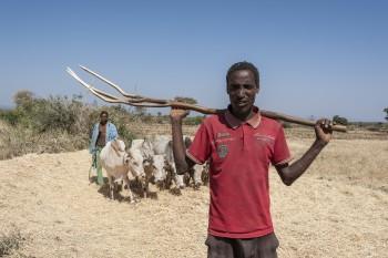 Amene Ahmed Ethiopia Sawena dist. 4469 ∏Johannes OdÇ
