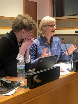 ACT's Gwen Berge (right) speaking at the Commission on Population and Development in New York.  Photo: contributed