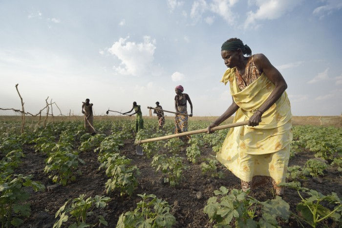 Adhieu Deng Ngewei and other women work together on April 12, 2017, in a community vegetable garden in Dong Boma, a Dinka village in South Sudan's Jonglei State. Most of the women's families recently returned home after being displaced by rebel soldiers in December, 2013, and they face serious challenges in rebuilding their village while simultaneously coping with a drought which has devastated their cattle herds. The Lutheran World Federation, a member of the ACT Alliance, is helping the villagers restart their lives with support for housing, livelihood, and food security. South Sudan