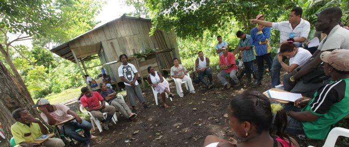 CaImage from the carica, Chocó. Consultation