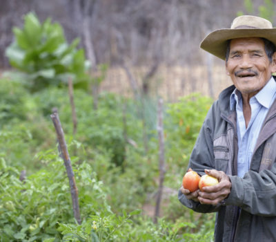 Photo of man working in garden in Bolivia