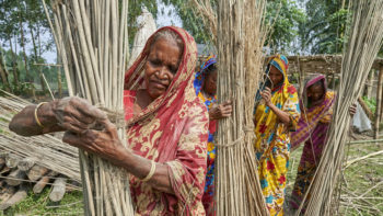 Anna Khatun and her neighbors dry jute in the sun in West Fasura, a village on an island in the Brahmaputra River in northern Bangladesh. Severe flooding in August 2017 destroyed the island's crops but RDRS Bangladesh, a member of the ACT Alliance, provided emergency cash grants to Khatun and other vulnerable island residents so they could reestablish their household economies and restart their lives. Photo: Paul Jeffrey/ACT